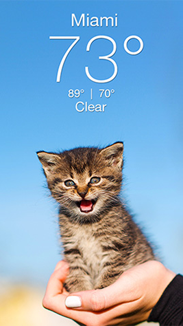 Weather Kitty Screenshot 1