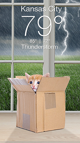 Weather Kitty Screenshot 2