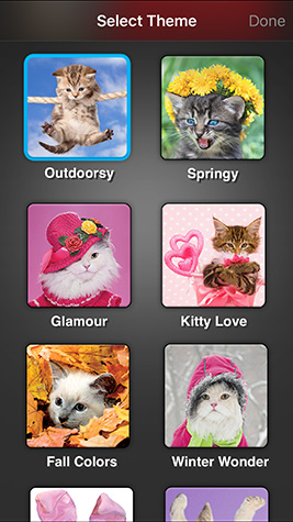 Weather Kitty Screenshot 5
